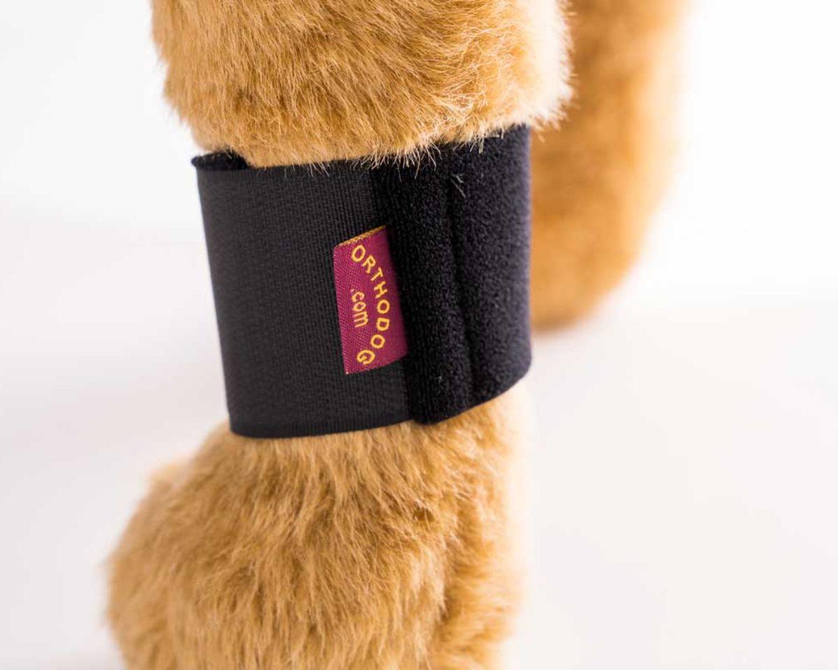 Ortho Dog Wrist Wrap on model